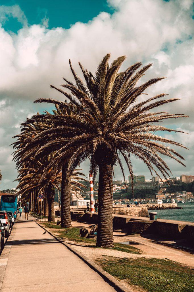 Portekiz İş Kurmak, Portekiz Gezi Rehberi, Portekiz Tur Rehberi, Portekiz Rehberi, Portekiz Yaşam, Portekize Yerleşmek, Portekiz çalışma izni nasıl alınır, Portekiz çalışma Vizesi nasıl alınır, Portekiz oturma izni, Portekiz vatandaşlığı evlilik, Portekiz vatandaşlık alma, Portekiz vatandaşlık şartları 2020, Portekiz Göçmenlik, Portekiz vatandaşlığı avantajları